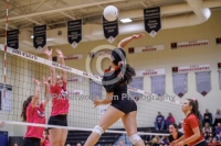 Gallery: Volleyball Oak Harbor @ Archbishop Murphy